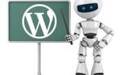 Как составить файл robots.txt для WordPress