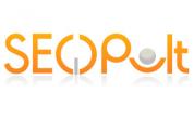 Автоматическое продвижение с SeoPult: отзывы, инструкция и рекомендации