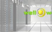 Хостинг-провайдер Well-Web: возможности, тарифы и бонусы