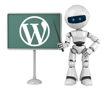 robots wordpress
