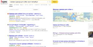 Яндекс Карты в поиске