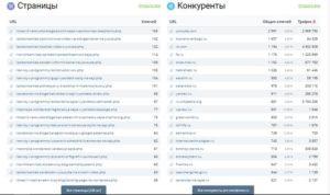Отчеты Keys.so: страницы выдачи и список конкурентов